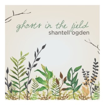 shantell-ogden_ghosts-in-the-field